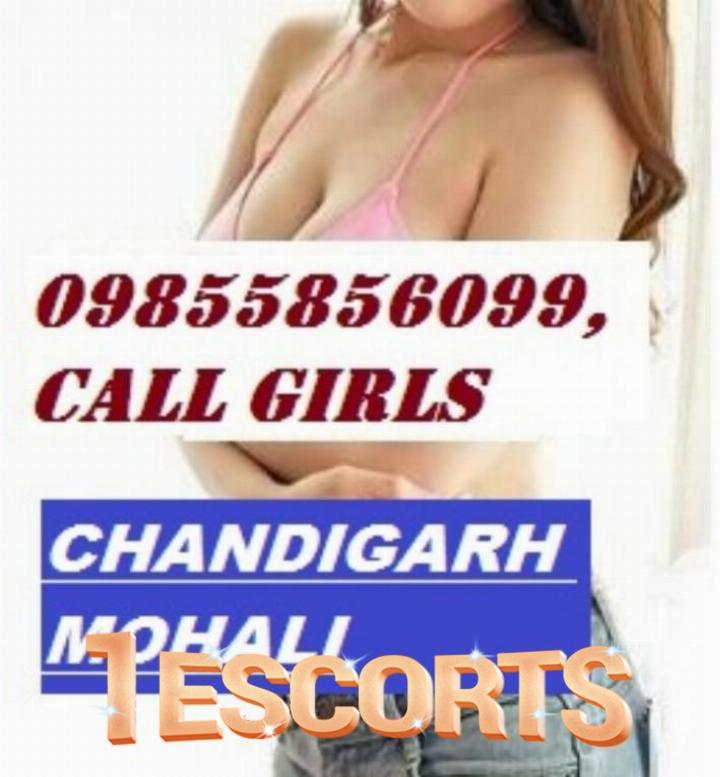 Kharar --Escort service in mohali Call Girls in Chandigarh Ambala -1