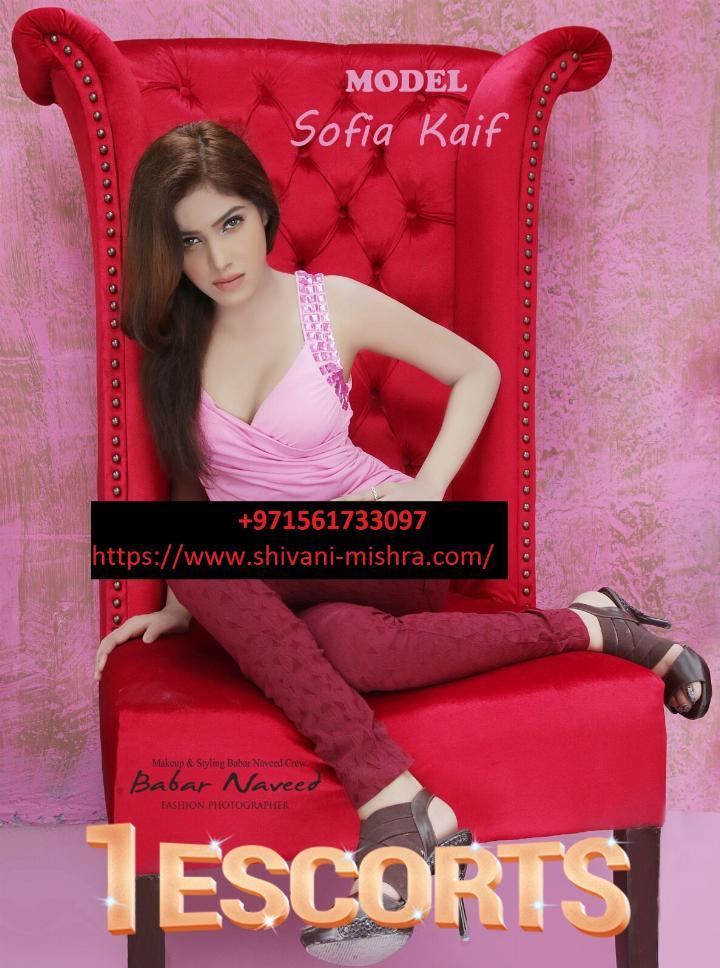 Miss Sofia  -1