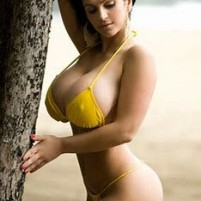 Best female escorts available in Noida  Crossing Extaintion City center Atta amp all Sector locati