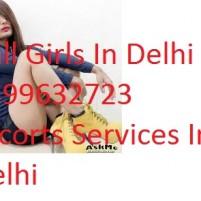 Call Girls In Delhi Call Girls Delhi Vip Escorts