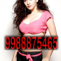 PANCHKULA   CALL RAJ PUNJABI  MEET amp ENJOY WE PROVIDE BEST SERVICR