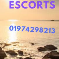 escort service bd