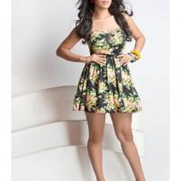 Haniya Escort Model in Holiday Inn Express *