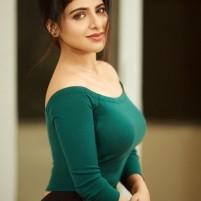 namra karachi escort