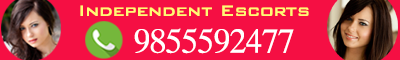 Independent Escorts Services Banner